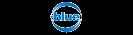 .blue Domains